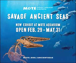 Mote Ancient Seas Exhibit, Our Town Sarasota News Events