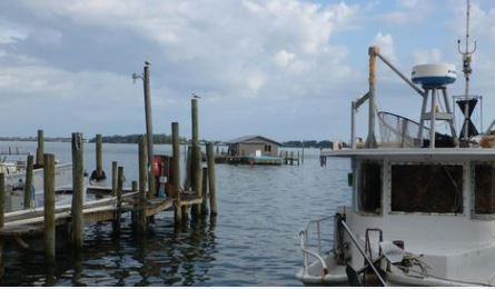 Fishing Village Structure in Danger, Our Town Sarasota News Events
