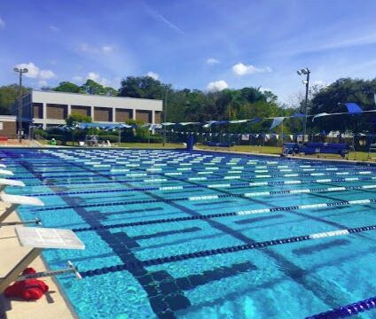 Summer Swim and Lessons Arlington, Our Town Sarasota News Events