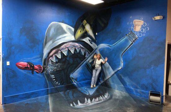 Sarasota 3-D Interactive Illusion : Kowal, Our Town Sarasota News Events
